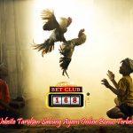 Sabung Ayam Online Bonus Cashback Terbesar 2018