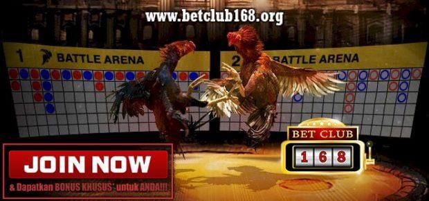 Situs Judi Sabung Ayam Online Bonus Deposit Terbesar
