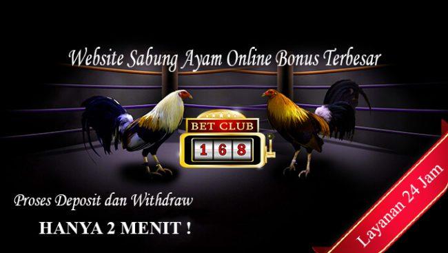 Website Sabung Ayam Online Bonus Deposit