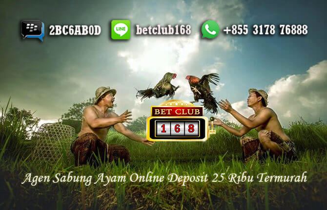 Sabung Ayam Online Deposit 25 Ribu