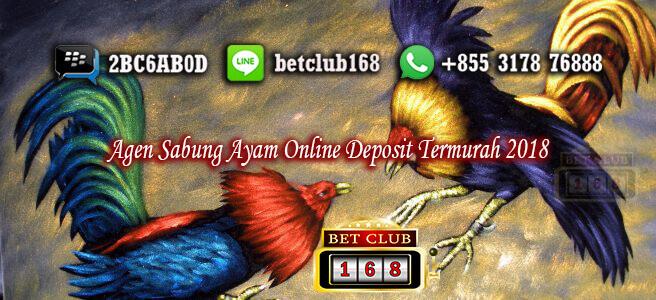 Sabung Ayam Online Deposit Termurah