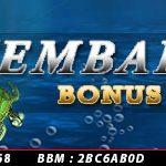bonus cashback ikan 5%