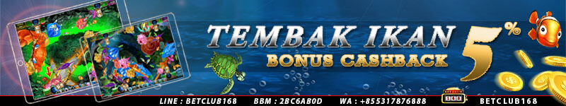 Judi Ikan Online Bonus Cashback 5%