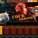 Adu Ayam Online SV388 Bonus 20%