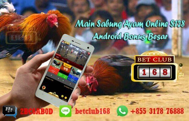 Sabung Ayam Online S128 Android Bonus Besar