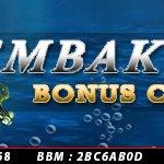 judi ikan bonus cashback deposit murah