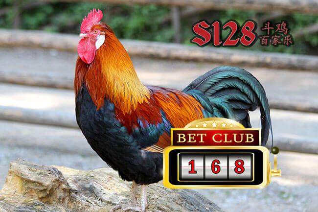 Menikmati Kemenangan Adu Ayam Online S128